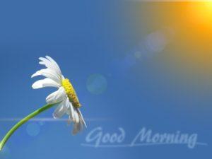 goodmorn001