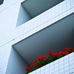 【体験談】住宅ローンを11年、35歳で完済!!【35年ローン】