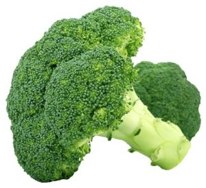 broccoli001
